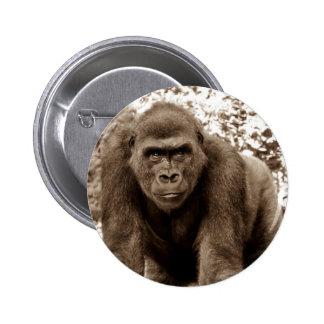 Gorilla Ape Primate Wildlife Animal Photo Pin