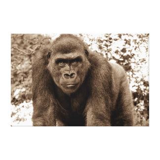 Gorilla Ape Primate Wildlife Animal Photo Canvas Print