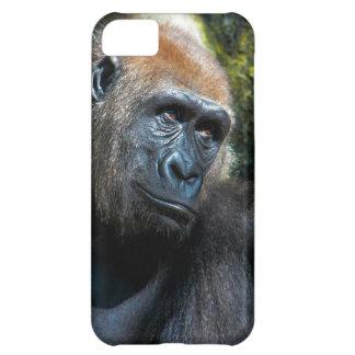 Gorilla Ape Primate Wildlife Animal Photo Cover For iPhone 5C