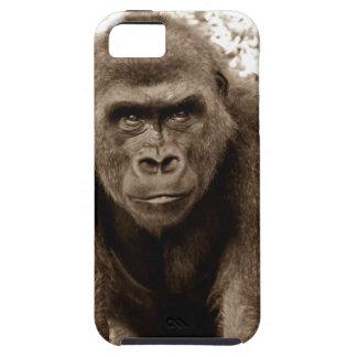 Gorilla Ape Primate Wildlife Animal Photo iPhone 5 Covers