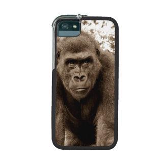Gorilla Ape Primate Wildlife Animal Photo Case For iPhone 5/5S