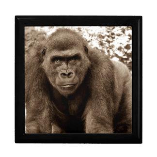 Gorilla Ape Primate Wildlife Animal Photo Trinket Boxes