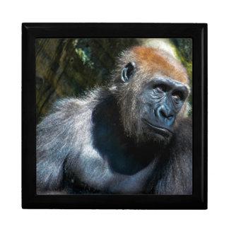 Gorilla Ape Primate Wildlife Animal Photo Keepsake Boxes