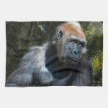 Gorilla Ape Primate Wildlife Animal Photo Kitchen Towels