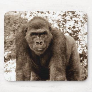 Gorilla Ape Primate Wildlife Animal Photo Mousepad