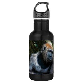Gorilla Ape Primate Wildlife Animal Photo Stainless Steel Water Bottle