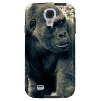 Gorilla Ape Primate Wildlife Photo