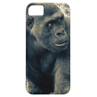 Gorilla Ape Primate Wildlife Photo iPhone 5 Covers