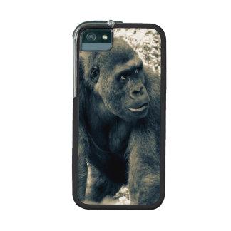 Gorilla Ape Primate Wildlife Photo Cover For iPhone 5/5S