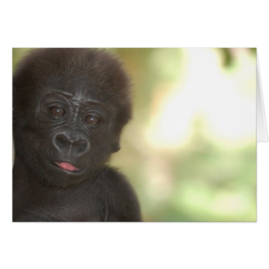 Gorilla Baby Blank Note Card