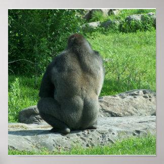 gorilla backside poster
