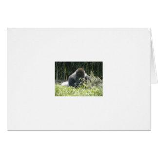 Gorilla Stationery Note Card