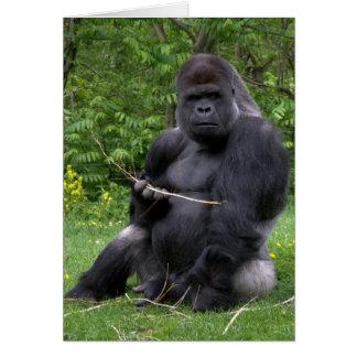 Gorilla Card