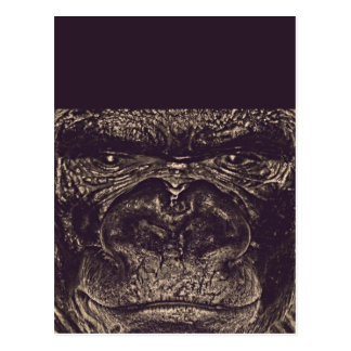 Gorilla, Close Up Face (gfaceacc) Post Card