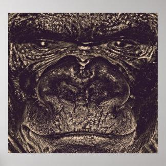 Gorilla, Close Up Face (gfaceacc) Poster