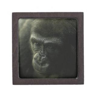 Gorilla Closeup.png Premium Keepsake Boxes