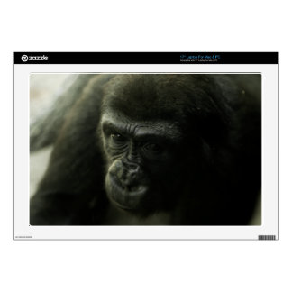 Gorilla Closeup.png Skin For Laptop