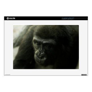 Gorilla Closeup.png Skins For Laptops