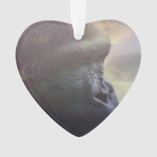 Gorilla Daydream