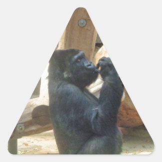 Gorilla eating his lunch, Animal, Wildlife, Ape Triangle Sticker