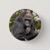 Gorilla F 8672 Pinback Button