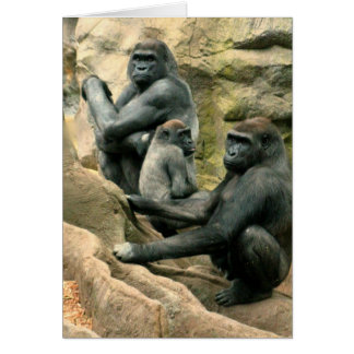 Gorilla Family Card