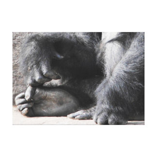 Gorilla Fingers Canvas Print