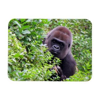 Gorilla Flexible Magnet