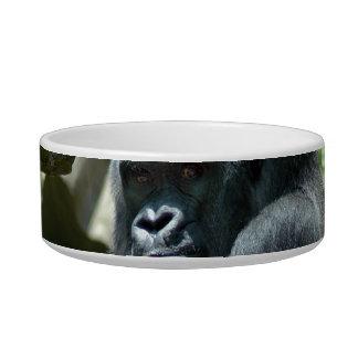 Gorilla Glare Pet Bowl