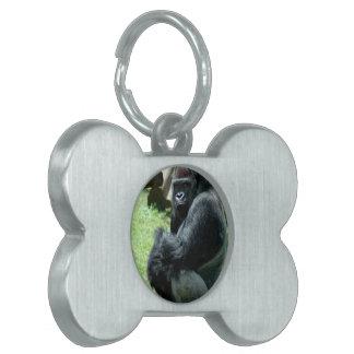 Gorilla Glare Pet Tag
