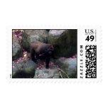 Gorilla in Flowers Stamp