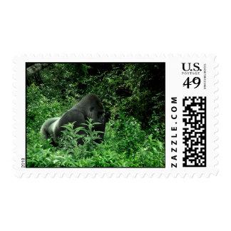 Gorilla in leaves green tint wildlife animal stamp