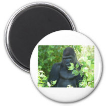 gorilla in the bush magnet