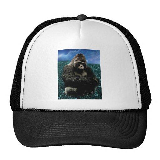 Gorilla in the meadow trucker hat