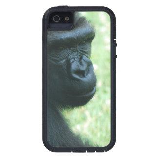 Gorilla in the Mist iPhone 5 Cases