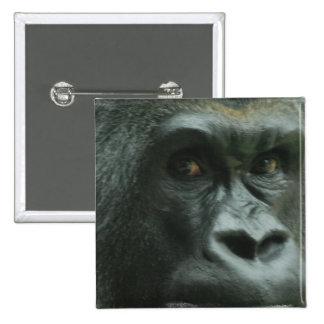 Gorilla in the Mist  Pin