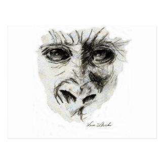 Gorilla in the Mist Postcard