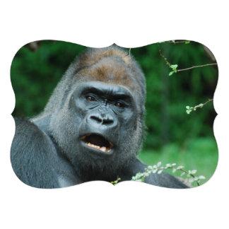 Gorilla Custom Announcement