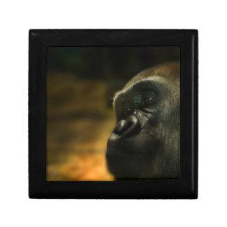 Gorilla Jewelry Box