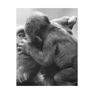 Gorilla Kiss Canvas Print