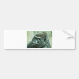 Gorilla Looking at You Bumper Sticker