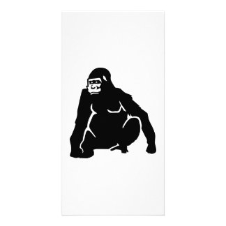 Gorilla monkey photo card
