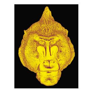 Gorilla or Ape, Close Up Face, Yellow Postcard