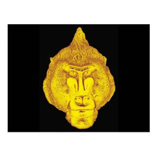 Gorilla or Ape, Close Up Face, Yellow Postcards