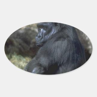 Gorilla Oval Sticker