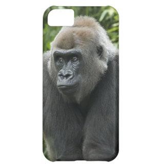 Gorilla Photo Cover For iPhone 5C