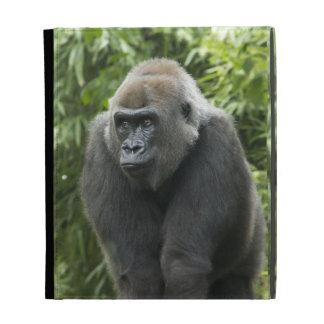 Gorilla Photo iPad Folio Case