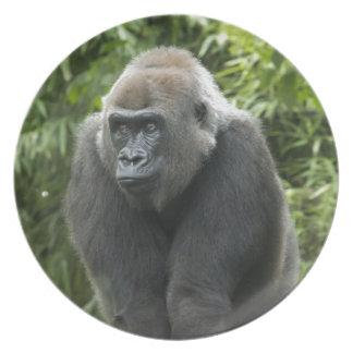 Gorilla Photo Party Plate