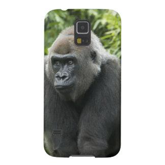 Gorilla Photo Samsung Galaxy Nexus Cases