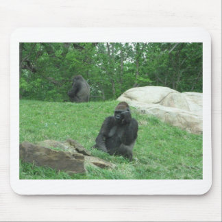 Gorilla pic mouse pad